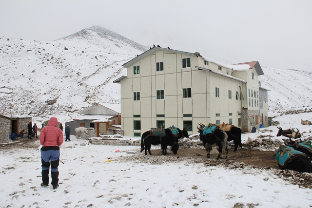 8 Places to Visit in Florida for Families