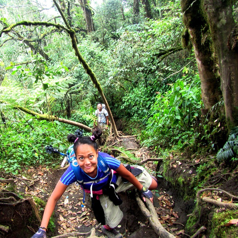 Trekking Services In Indonesia